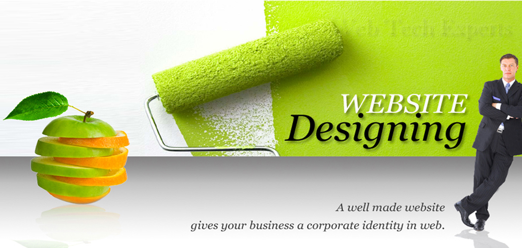 website designing in delhi - Website Designing Company in Delhi, Web